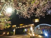 旅館吉田屋の前。(玄関前からの景色)左側に見えるアーチ型屋根がBARクロニクルテラス。