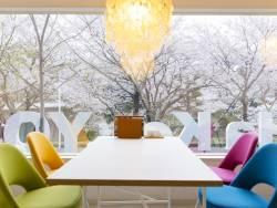 cafe&shop KiHaKoのお席からも桜が見えます。コーヒーやデザートをお召上がり頂きながら桜観賞なんていかがですか。